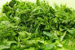parsley Stock Image