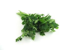 Free Parsley Stock Images - 5898794