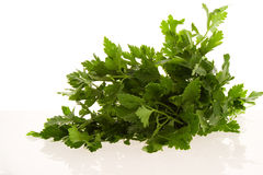 Parsley Stock Photos