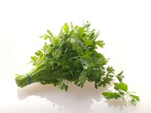 Parsley. Bunch of parsley Stock Photo
