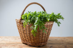 Parsley in basket Stock Images