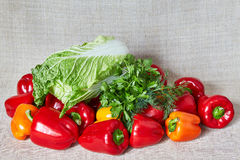 Parsley, Beijing cabbage, fennel, vegetables lies on a gray canvas Stock Photos