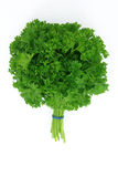 Parsley bouquet Royalty Free Stock Photo