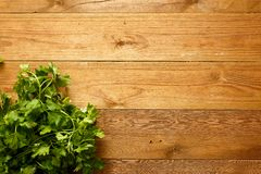 Parsley Bouquet on wood table Stock Image