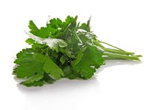 Parsley bunch Stock Photo