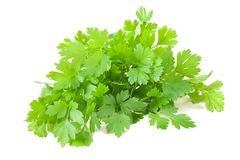 Parsley. Bunch  isolated on white background Royalty Free Stock Image