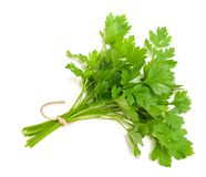 Parsley Royalty Free Stock Photos