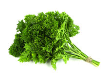 Parsley bunch on white background. Tasty, natural stock images