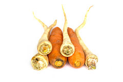 Parsley and carrot Royalty Free Stock Images