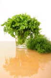 Parsley and celery Stock Images