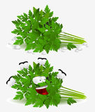Parsley character Royalty Free Stock Image