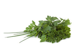 Parsley and Chives Stock Images