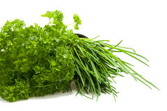 Parsley and chives Stock Image