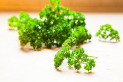Parsley on the chopping board Stock Photo