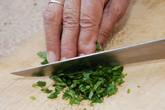 Parsley chopping detail Stock Image