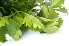 Parsley closeup Royalty Free Stock Photography