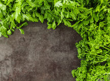 Parsley with copy space Royalty Free Stock Photography