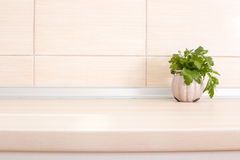 Parsley on countertop. Fresh parsley in pot on wooden kitchen countertop royalty free stock photo