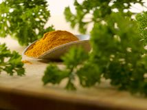 Parsley between curry Royalty Free Stock Images