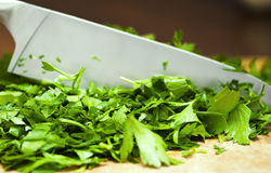 Parsley cutting Royalty Free Stock Photos