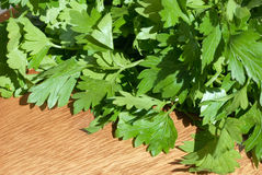 Parsley on cutting board. Fresh green parsley on cutting board, close-up Royalty Free Stock Photography