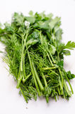 Parsley and dill Stock Images