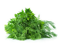 Parsley, dill, bunch Royalty Free Stock Photo