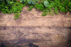 Parsley and dill on wooden table Stock Photography