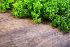 Parsley and dill on wooden table Royalty Free Stock Photo