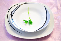 Parsley in a dinner plate Stock Images