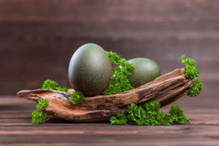 Parsley dyed easter eggs. Natural easter egg dyeing green with parsley Stock Images