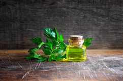 Parsley essential oil. In a glass bottle Royalty Free Stock Image