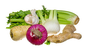 Parsley, fennel, onion, garlic, celery, ginger Stock Photos