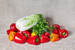 Parsley, fennel, vegetables, Beijing cabbage lies on a gray canvas Royalty Free Stock Photo
