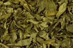 Parsley Flakes Stock Images