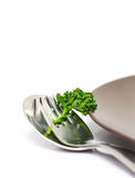 Parsley with fork and spoon. Isolated on a white background (with sample text Stock Photography