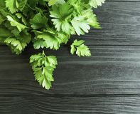 Parsley fresh on a black wooden background ingredient. Parsley fresh on a black wooden background Stock Photography