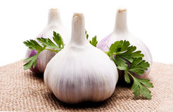 Parsley and garlic on an  background Stock Photo