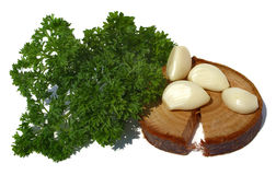 Parsley and garlic Stock Images