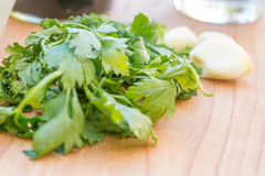 Parsley and garlic on wooden cutting board, cooking time backgro Stock Images