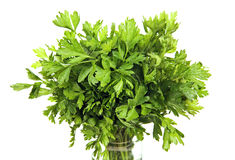 Parsley in a glass jar. Stock Photos