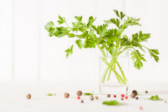 Parsley in a glass with water on a white background. Place for the text. Side view Royalty Free Stock Image