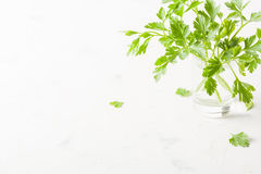 Parsley in a glass with water on a white background. Royalty Free Stock Images