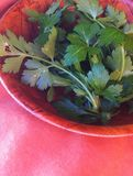 Parsley. Green fresh parsley in the wooden brown bowl Royalty Free Stock Image