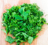 Parsley herb Royalty Free Stock Photos
