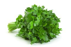 Free Parsley Herb Bunch Stock Photos - 159098193