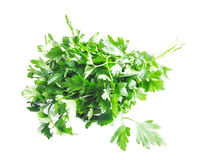Parsley Herb Royalty Free Stock Photo