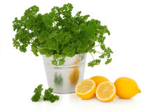 Parsley Herb and Lemon Fruit Stock Photo