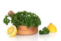Parsley Herb and Lemon Halves Stock Photo