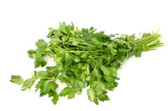 Parsley isolated Stock Photography
